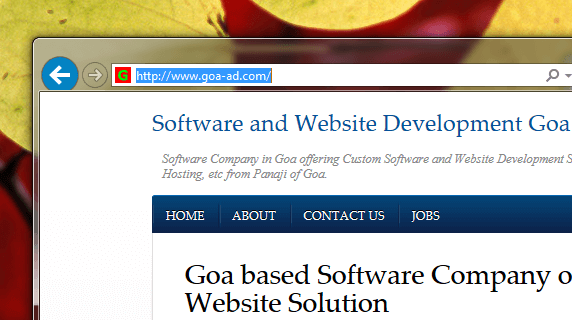 Website Design Goa